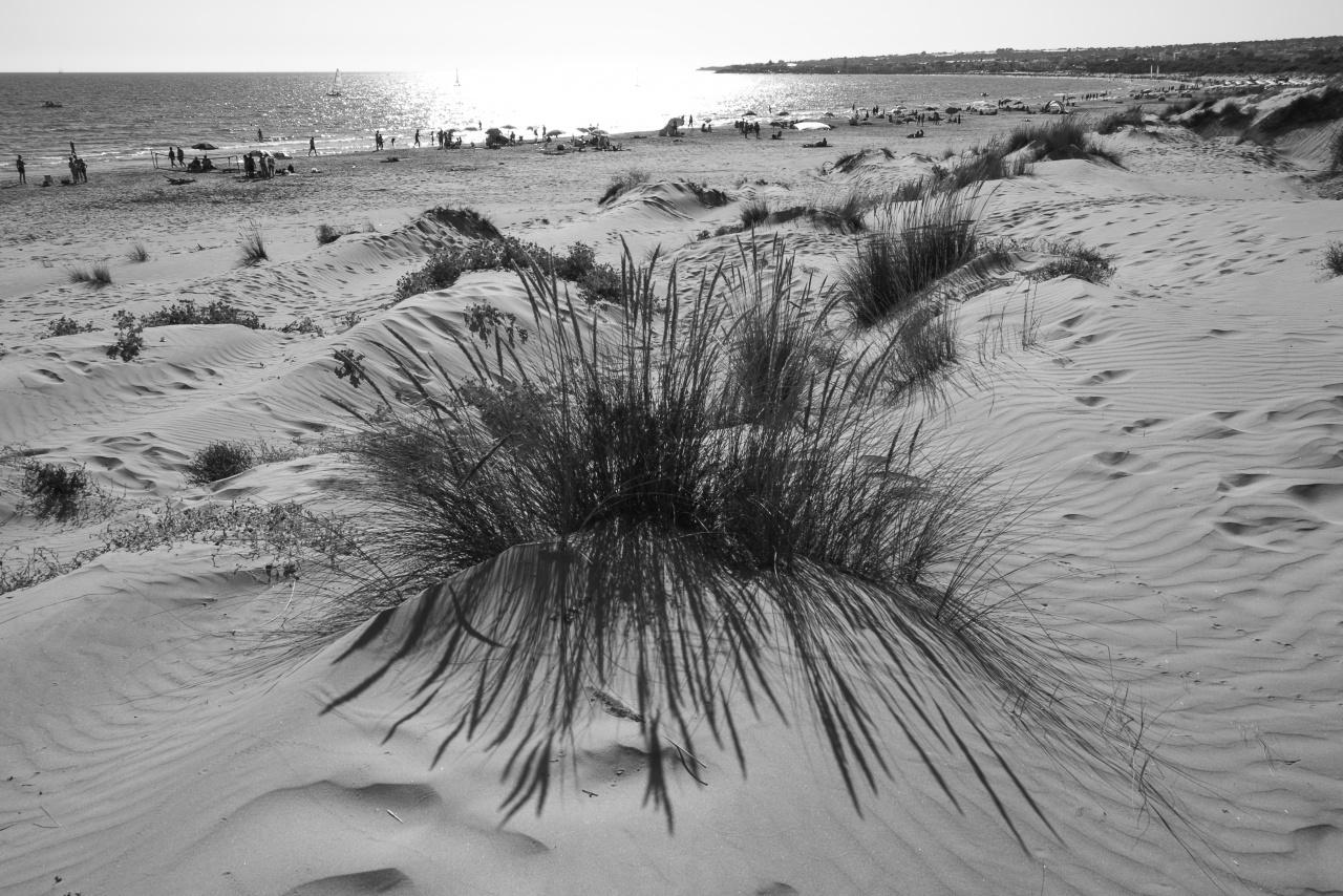 Dunes at Sampieri, Scicli