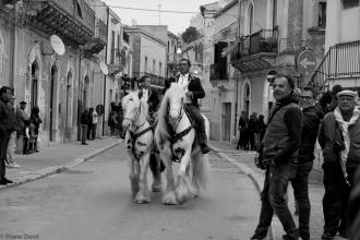 Cavalcata_0584.jpg