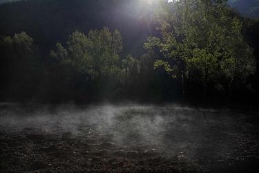 Uomini nel bosco